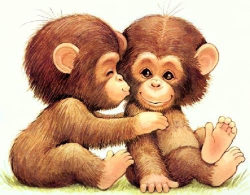 Two monkeys hugging drawing - photo#2